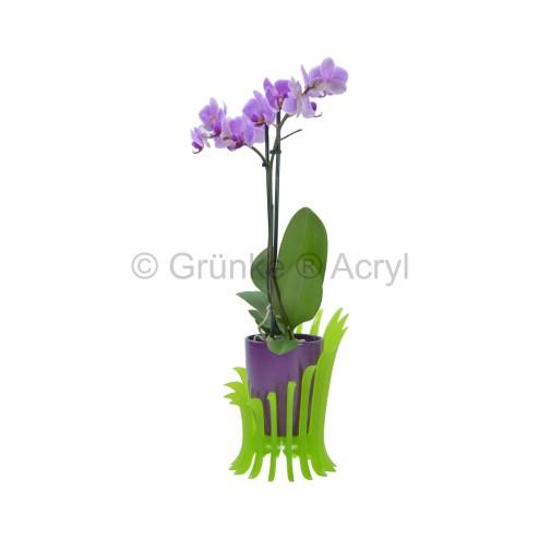 Design Blumensessel Orchiedee Blumentopf von Grünke® Acryl - acrylic-store.de